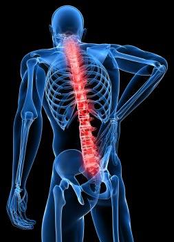 back-pain-1.jpg